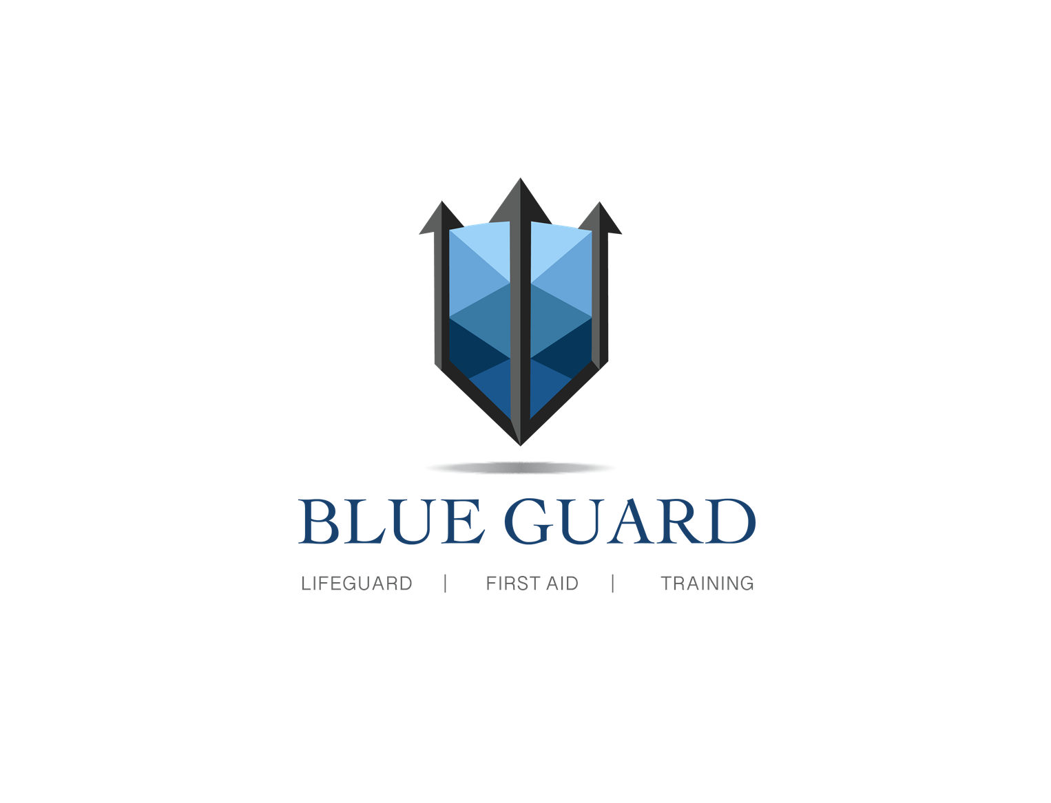 Blue Guard Training